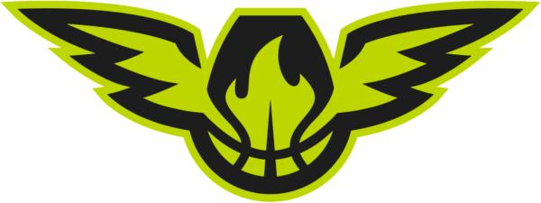 Atlanta Hawks 2015 Pres Alternate Logo V5 Patch