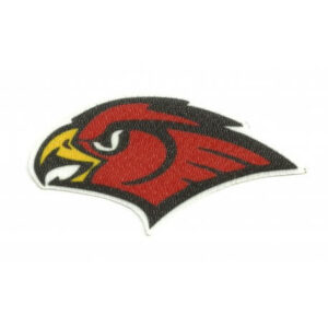 Atlanta Hawks NBA Primary Team Logo Patch