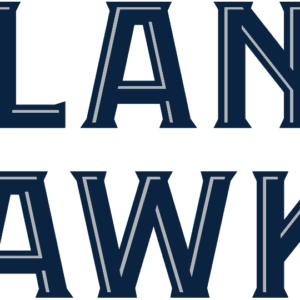 Black Atlanta Hawks NBA Alternate Logo Patch