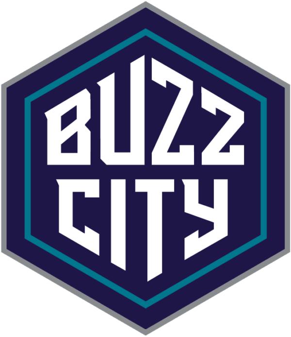 Charlotte Hornets 2014 Pres Alternate Logo Patch