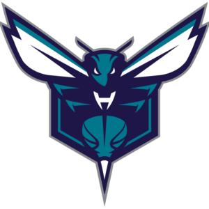 Charlotte Hornets 2014 Pres Alternate Logo V2 Patch
