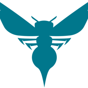 Charlotte Hornets 2014 Pres Alternate Logo V3 Patch