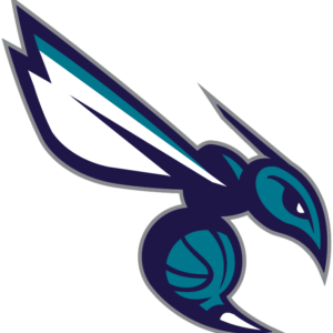 Charlotte Hornets 2014 Pres Alternate Logo V4 Patch