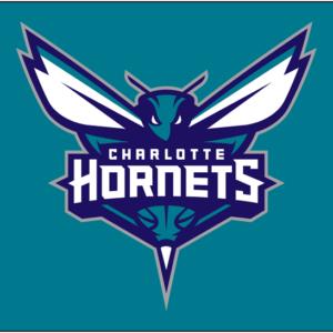 Charlotte Hornets 2014 Pres Primary Dark Logo Patch