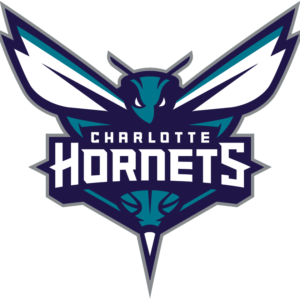 Charlotte Hornets 2014 Pres Primary Logo Patch