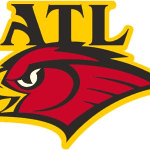 NBA Atlanta Hawks Alternate Logo Patch