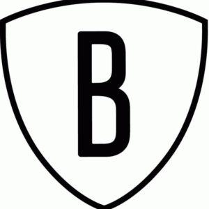 NBA Brooklyn Nets Alternate Logo V3 Patch