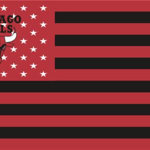 NBA Chicago Bulls Flag Patch