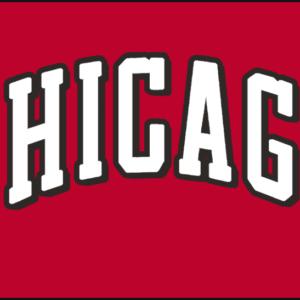 NBA Chicago Bulls Jersey Logo Patch