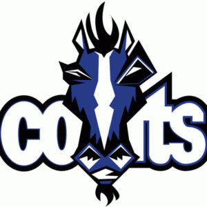 NFL Indianapolis Colts 2001 Logo V2 Patch