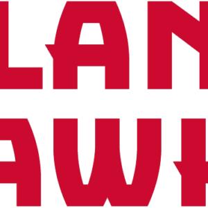 Red Atlanta Hawks NBA Alternate Logo Patch