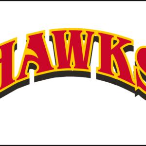 Red Yellow NBA Atlanta Hawks Alternate Logo Patch