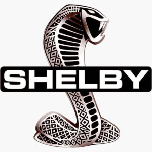 Vintage Shelby Cobra FORD Patch